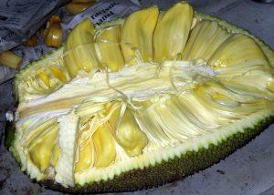 interno frutto di giaca