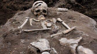 scheletro di vampiro